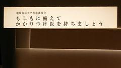 DSC_8902.JPG